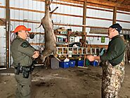 Top 10 Hunting Violations During Deer Season | Two Verbs
