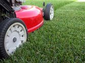 Lawn Care Auckland in South Auckland