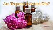 Are Terpenes Essential Oils? by Nethan Paul - Issuu