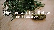 How Terpenes Help Reduce Inflammation by Nethan Paul - Issuu