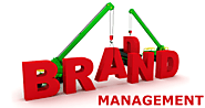 Why do you need brand management service in Brisbane?