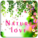 Make Nature Photo Frames