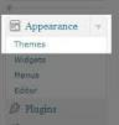How to change your WordPress theme?