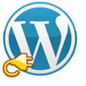 What are WordPress plugins?