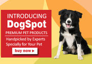 Online Pet Products Shop