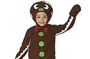 Ginger Bread Man Costume