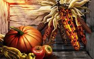 Thanksgiving Backgrounds Wallpapers 2014 Free, Thanksgiving Background