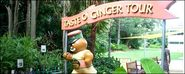 The Buderim Ginger Factory