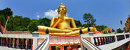 Explore the Temples of Phuket