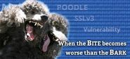 Poodle: Vulnerabilities in Older SSL Versions - Netrouting Blog