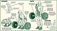 Deadlift Infographic | Deadlift, Deadlift form, Kettlebell workout
