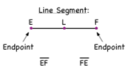 What are the Endpoints of a Line Segment?