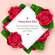 Happy Rose Day Wishes 2021 - Quotes, Status, Messages, & Images - Happy Festivals