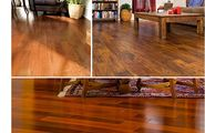 Engineered Wood flooring Installation and Restoration for Home