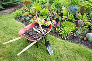 How to Landscape Your Home - Easy Landscaping Tips for Beginners