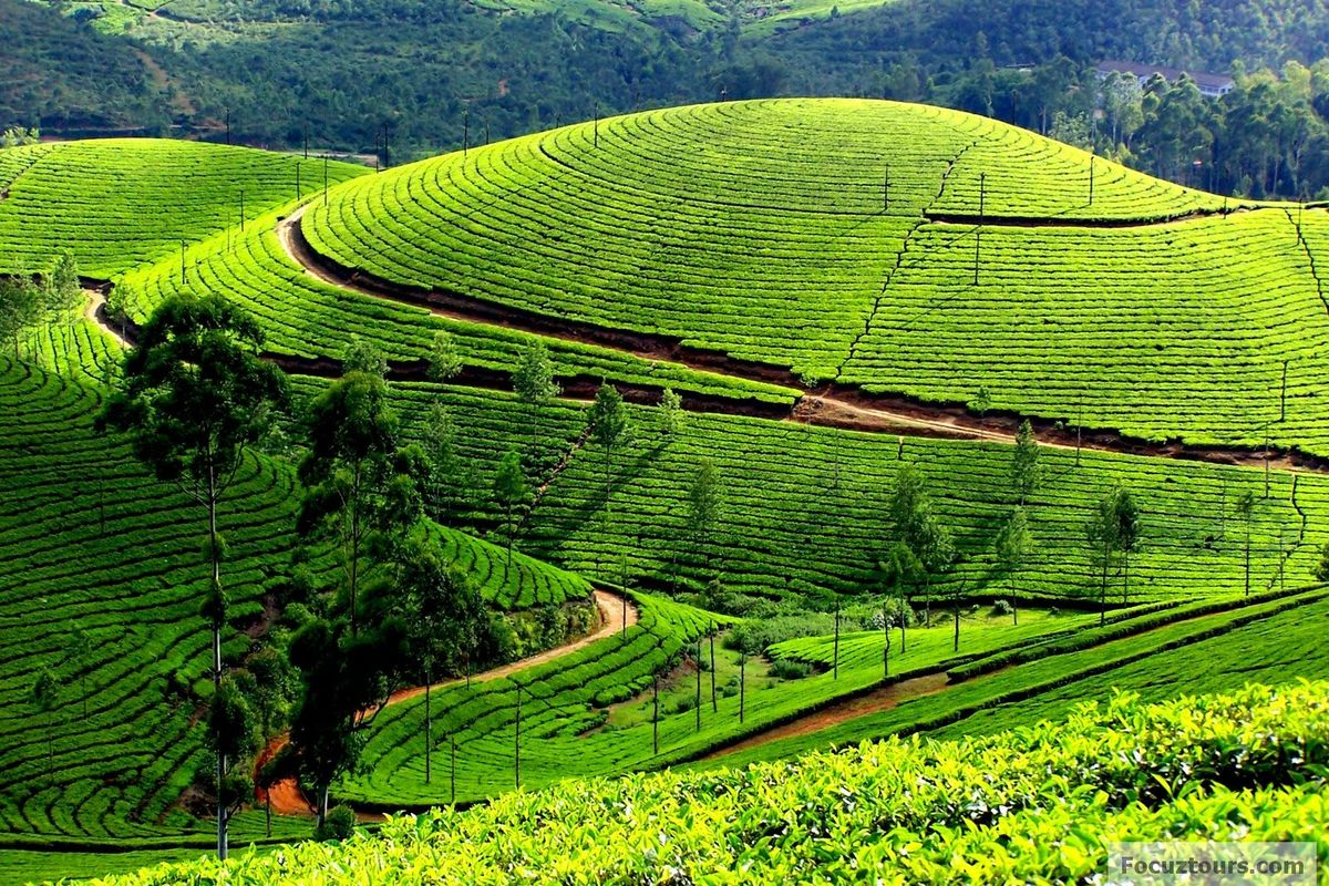 Headline for Beautiful Hill Stations of Tamil Nadu