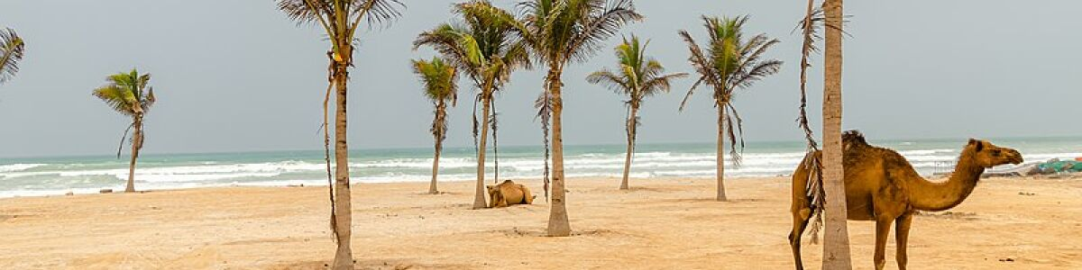 Headline for Top 10 Places to Visit in Salalah - Experience the beauty and history of Salalah