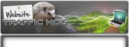 http://website-traffic-hog.com/?rid=12224