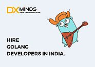 Hire Golang Developers in India | DxMinds