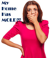 Tips for Selling a Home with Mold