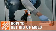 How to Get Rid of Mold | The Home Depot