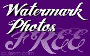 Top 10! Free Watermark Software & Sites to Watermark Online