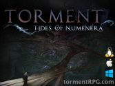 About Torment: Tides of Numenera