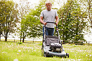 Lawn mowers: a buyer's guide - The English Garden