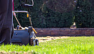 How to scarify your lawn - The English Garden