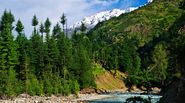 6D / 5N Kullu Manali Honeymoon Package from Mumbai