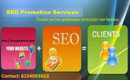 SEO Promotion Services and Interactive Website Strategy