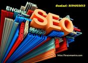 How This SEO Promotion Services Works all details?