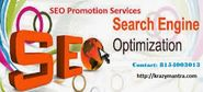 The Different Characteristics of SEO Promotion Service Provider