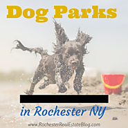 Dog Parks In Rochester NY | Monroe County Dog Parks