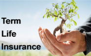 Buy Term Life Insurance Online Today!