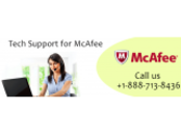 Call +1-888-713-8436 for McAfee Antivirus Tech Support Services