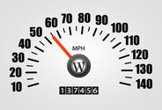 Optimize Your WordPress For More Speed