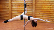 Best Dancing Pole For Home Reviews (with image) · app127