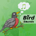 Bird Sounds HD + By Your Apps Online