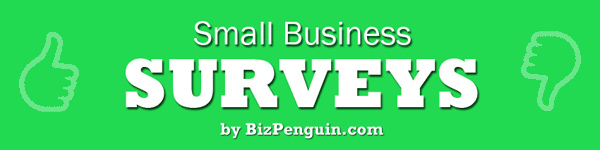 Headline for Top Small Business Surveys for 2013