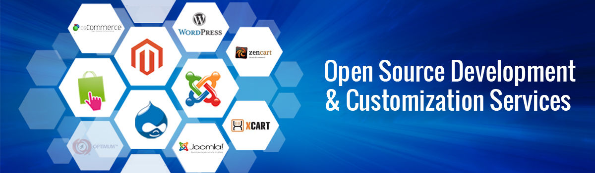 Headline for Open Source Development & Customization Services India