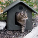 K&H Outdoor Heated Kitty House | Overstock.com Shopping - The Best Deals on Other Pet Houses