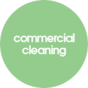 Experience Auckland Cleaning Services In Your Budget.