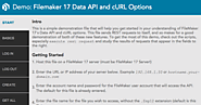 FileMaker 17 Data API - FileMakerProGurus