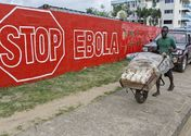Norway to give Liberia $150m to fight illegal logging that may spread Ebola