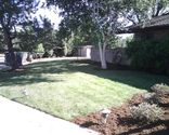 Consider purchasing some of the Eco-Friendly products that Boulder Lawns has available for their customers.