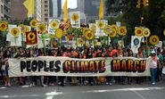 Climate change protests: how do we turn placards into policy? - live Q&A