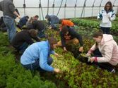 Students explore organic farming, sustainable agriculture in new GVSU program