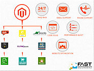 Magento Ecommerce Integration Services and Support