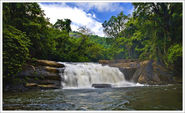 7 Most Beautiful Waterfalls in Kerala
